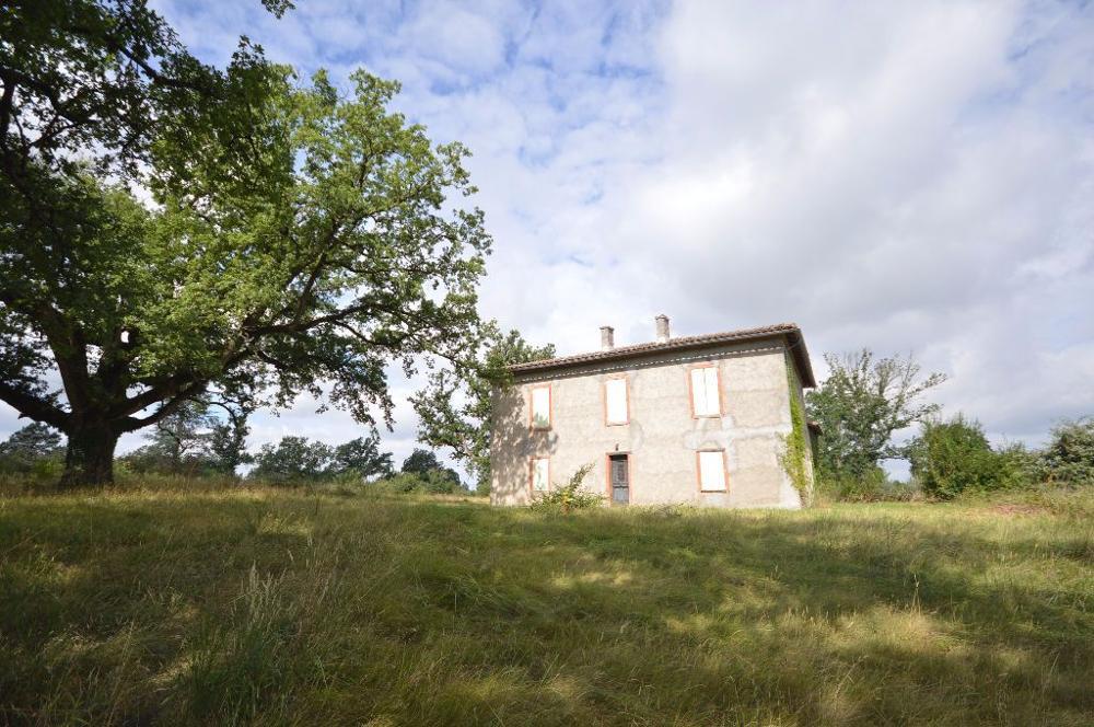 Saint-Nauphary Tarn-et-Garonne Haus Bild 3361198