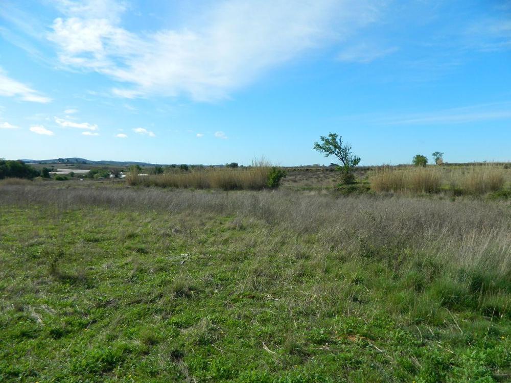 Tourbes Hérault terrein foto 3303287
