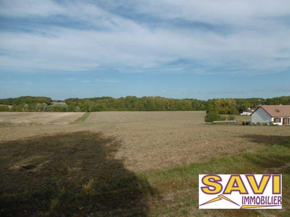 Griselles Loiret terrain picture 4425378
