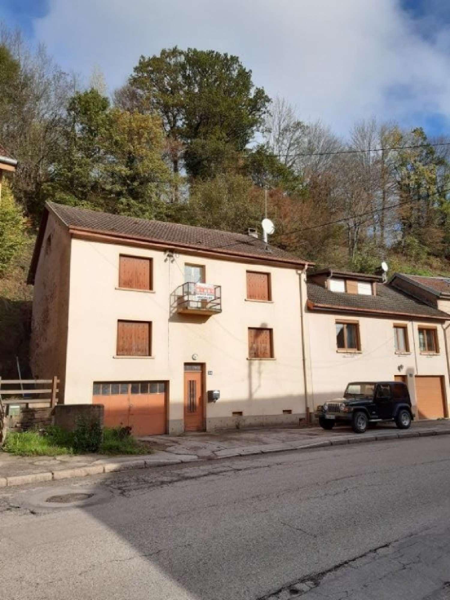 La Petite-Raon Vosges maison photo 4486692