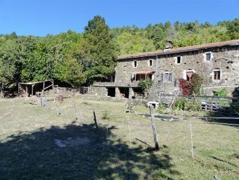 Saint-Julien-des-Points Lozère Bauernhof Bild 4516550