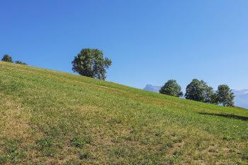 Praz-sur-Arly Haute-Savoie maison photo 4534831