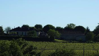 Cahors Lot vignoble photo 4529381
