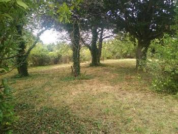 Briollay Maine-et-Loire terrein foto 4570524