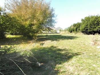 Sainte-Gemme-la-Plaine Vendée terrein foto 4550900