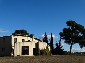 Carcassonne Aude vignoble photo 4531705