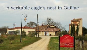 Gaillac Tarn vineyard picture 4528657