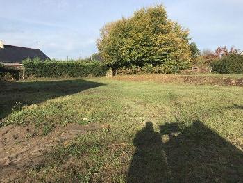 Étriché Maine-et-Loire terrein foto 4515632