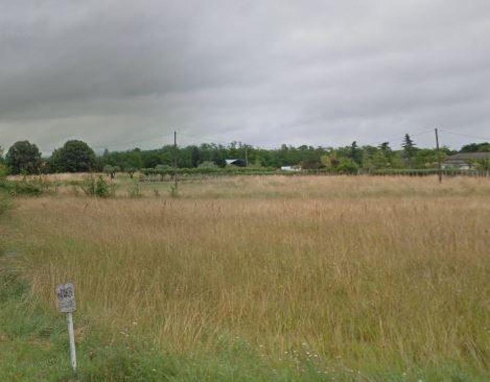 Viterbe Tarn terrein foto 3480156