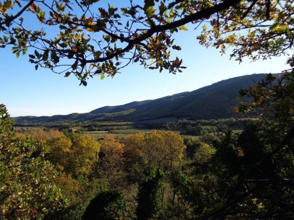 Rigarda Pyrénées-Orientales Grundstück Bild 3469161