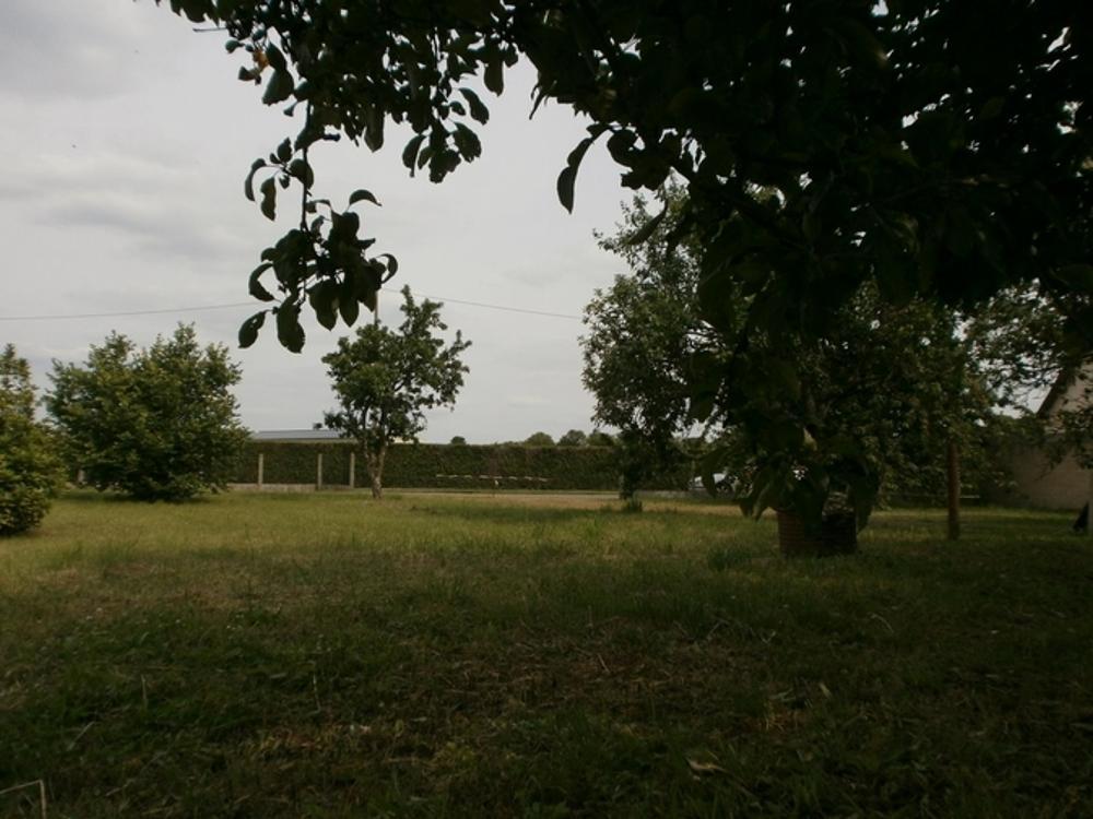 Durtal Maine-et-Loire terrain picture 3472595