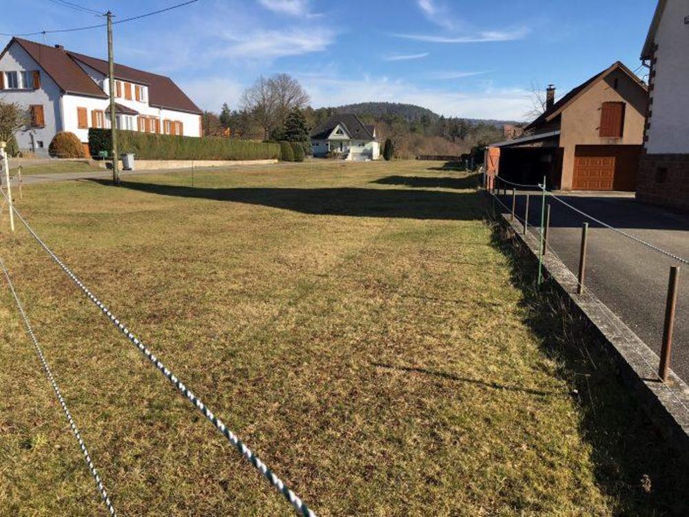 Wimmenau Bas-Rhin terrain picture 3504575