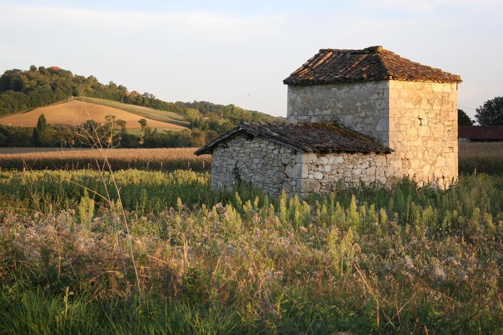 Plieux Gers terrein foto 3482467