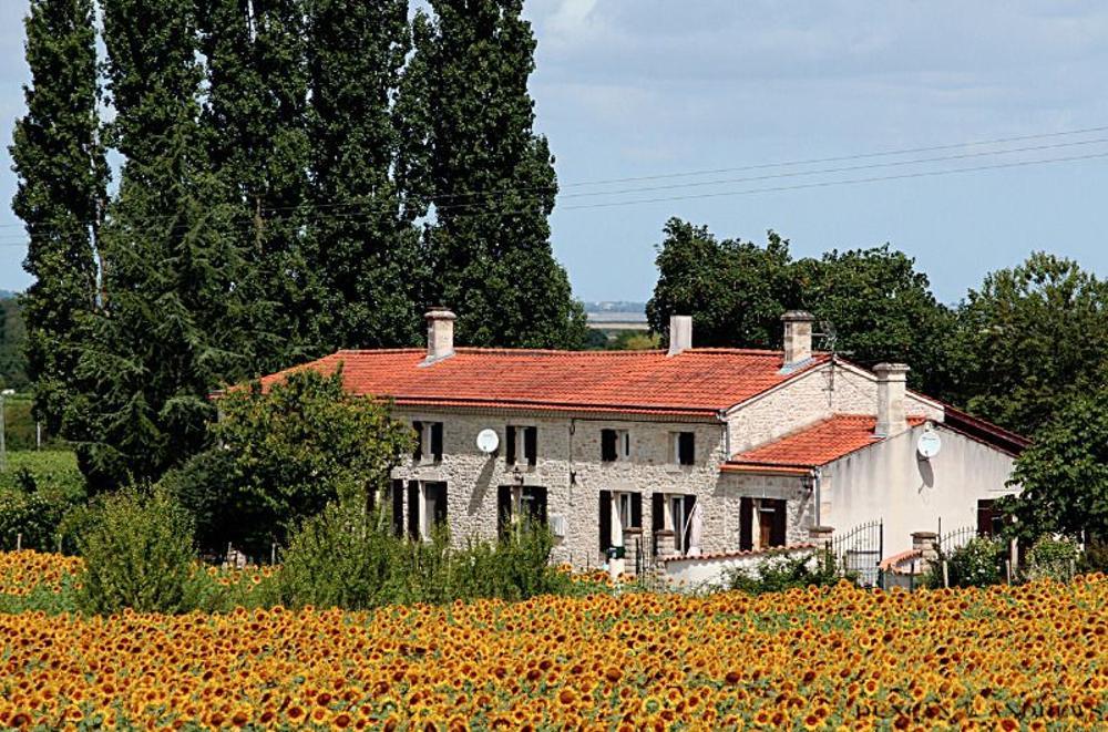Saint-Androny Gironde maison photo 3460996