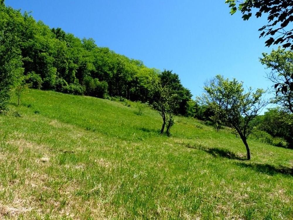 Besançon Doubs terrain picture 3459439