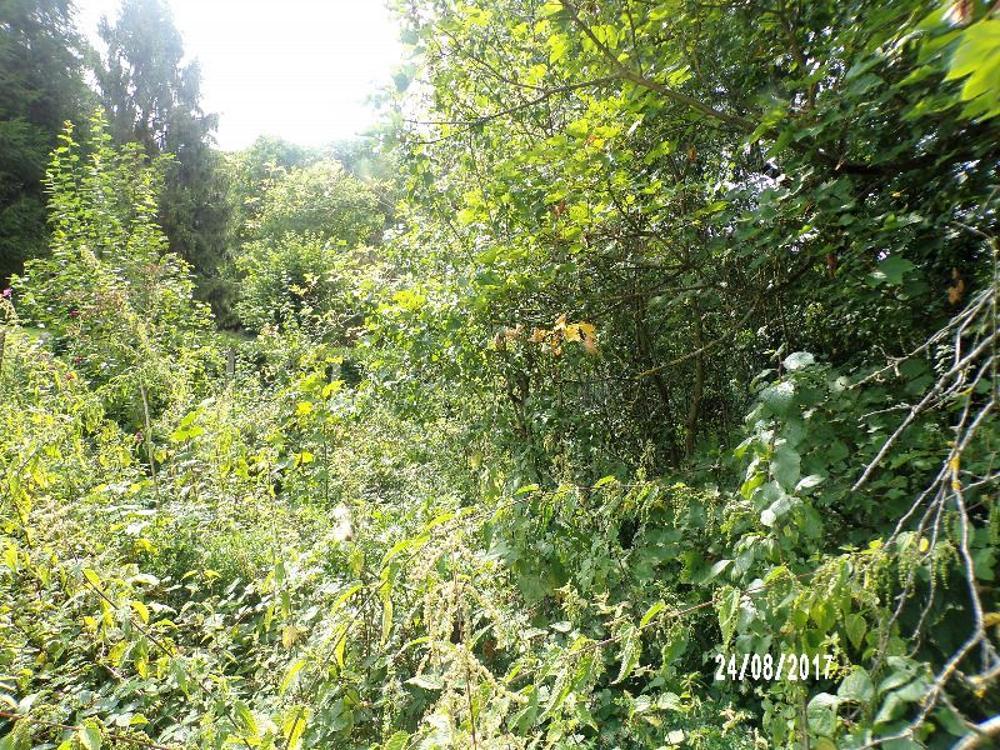 Catenoy Oise terrein foto 3467646
