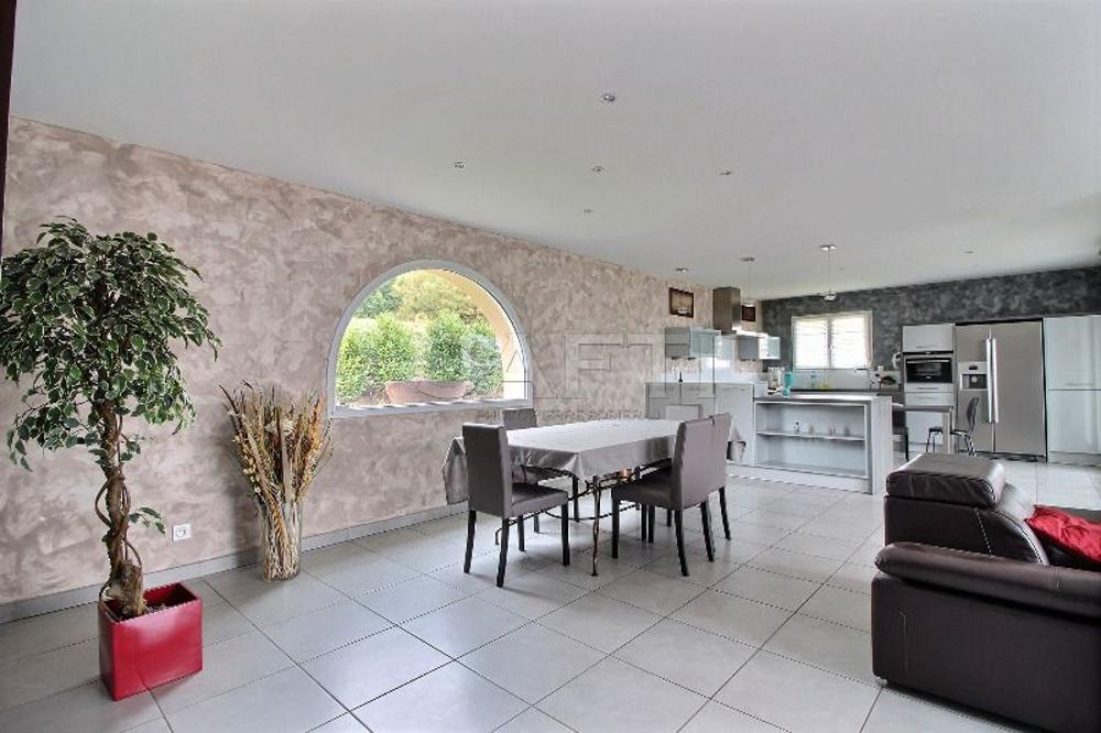 Copponex Haute-Savoie huis foto 3458639