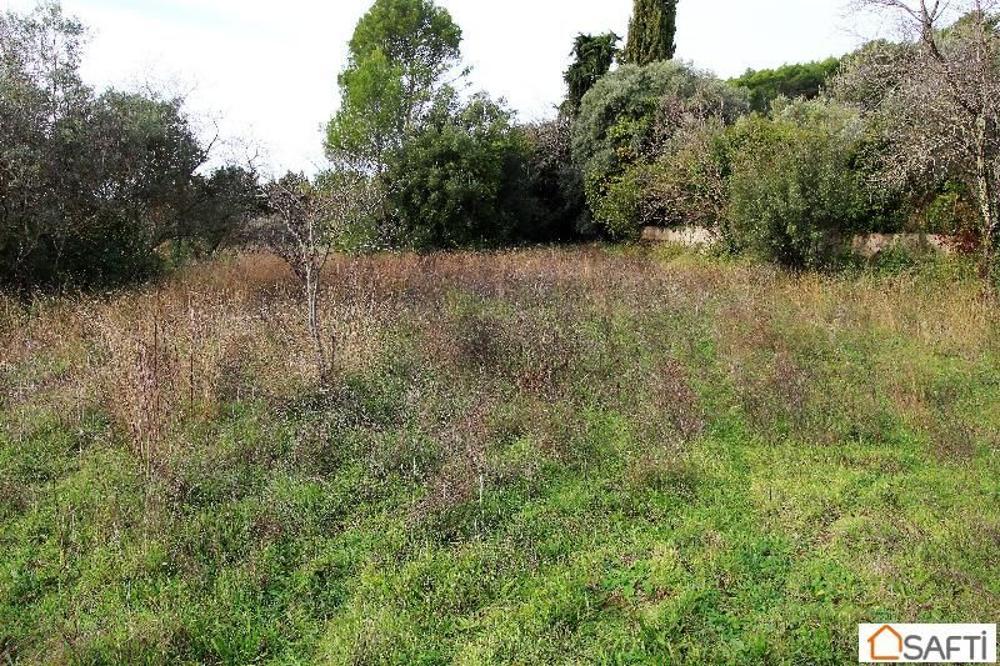 Lorgues Var terrain picture 3462378
