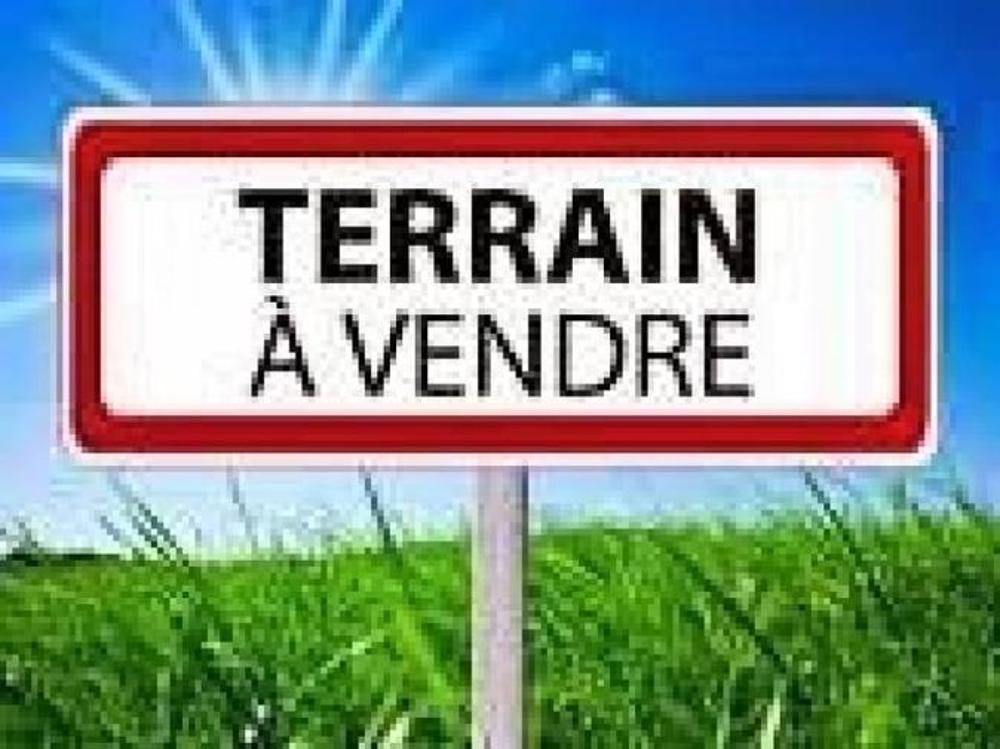 La Selle-sur-le-Bied Loiret terrain picture 3449821