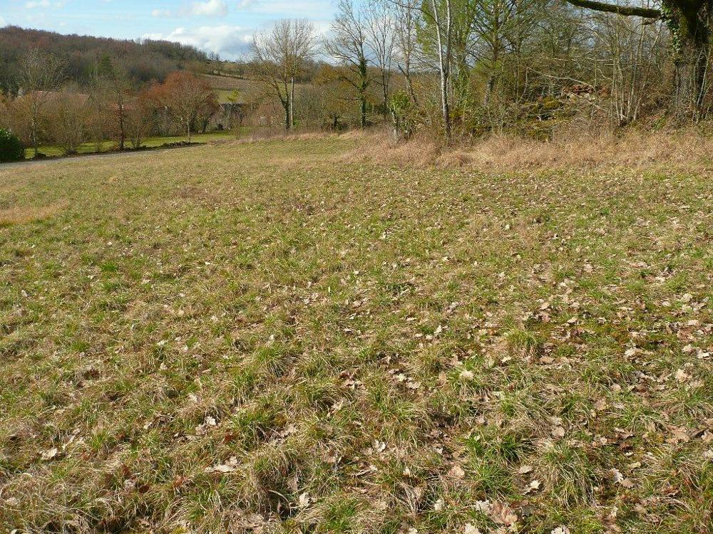 La Rouquette Aveyron terrain picture 3482065