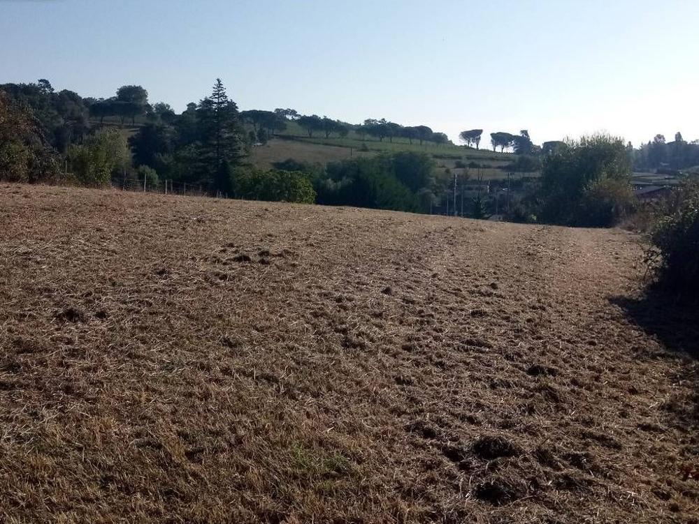 Lembras Dordogne Grundstück Bild 3448950