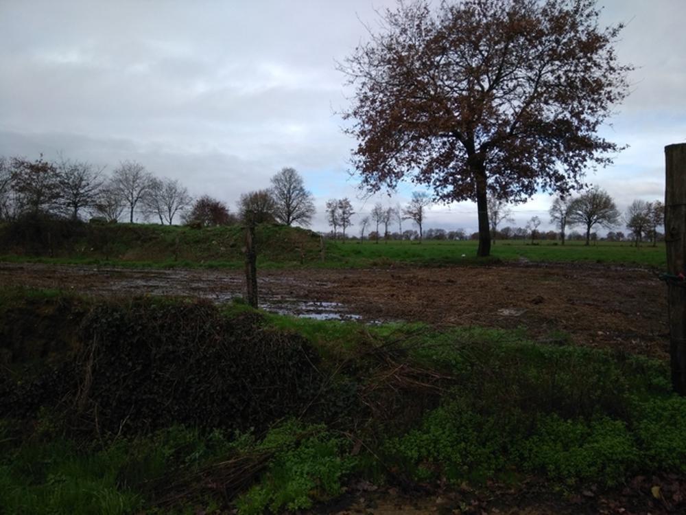 Venansault Vendée Grundstück Bild 3472799