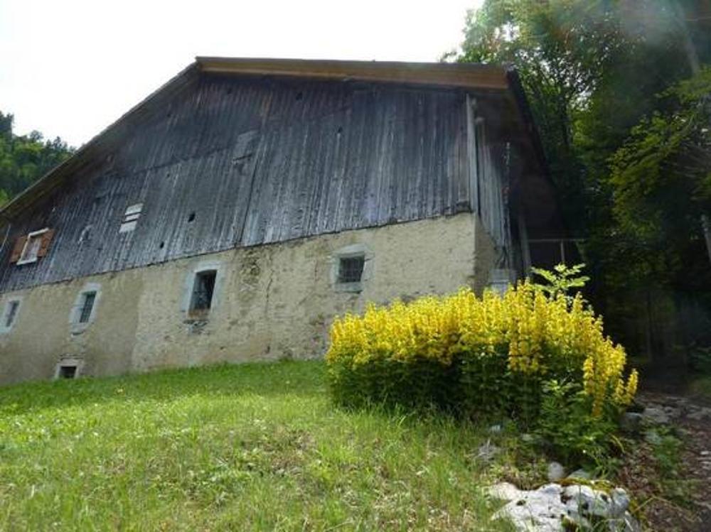 Brizon Haute-Savoie Haus Bild 3471688