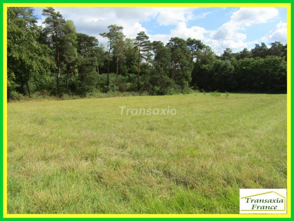 Montrichard Loir-et-Cher terrain picture 3436329