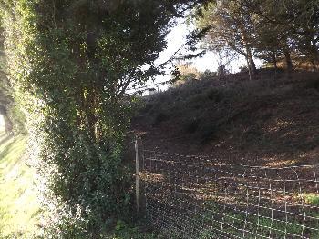 Pissotte Vendée terrein foto 3447121