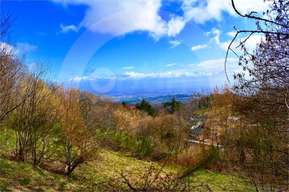 Orcines Puy-de-Dôme terrain picture 3583730