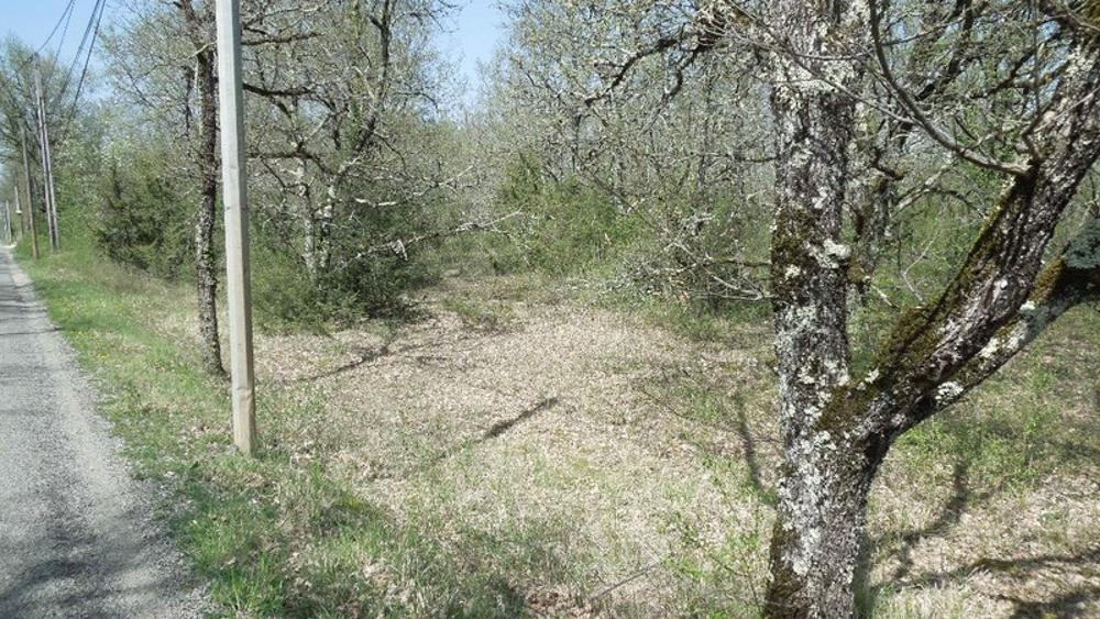 Lalbenque Lot Grundstück Bild 3605400