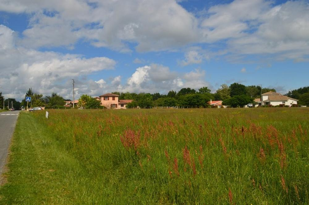 Saint-Gaudens Haute-Garonne Grundstück Bild 3604277