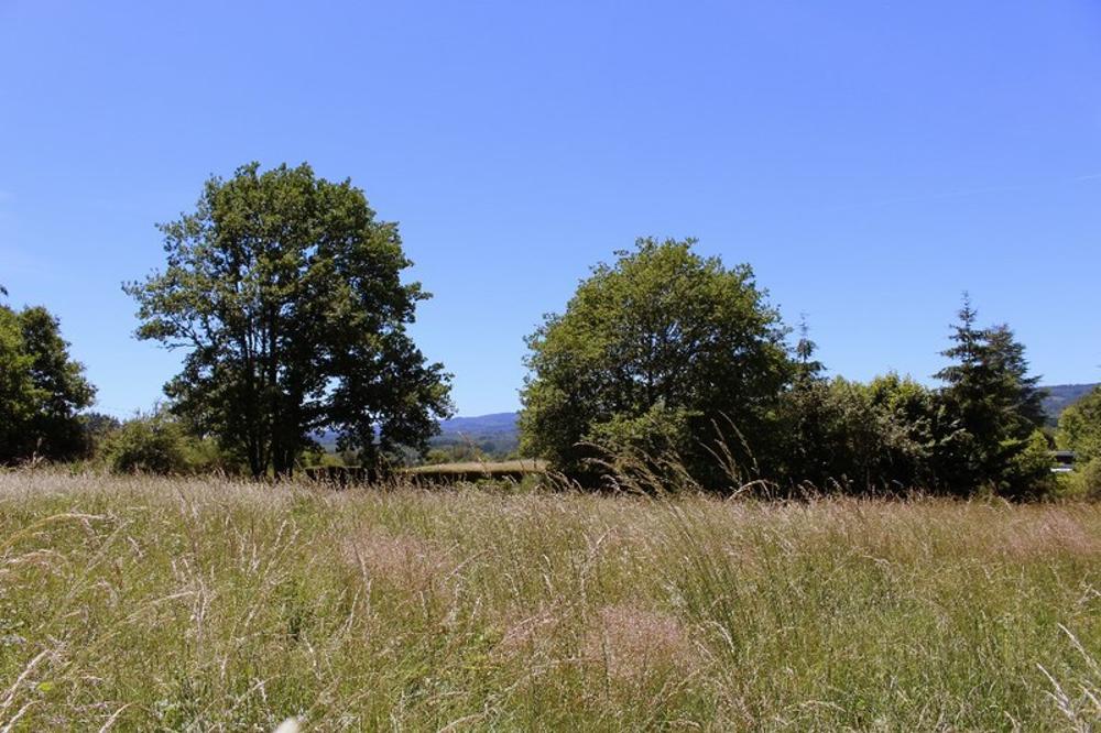 Meymac Corrèze Grundstück Bild 3600142