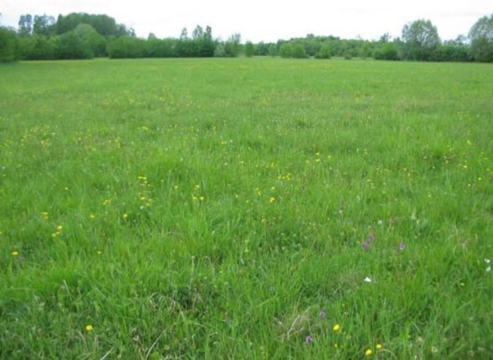 Coulommiers Seine-et-Marne Grundstück Bild 3599051