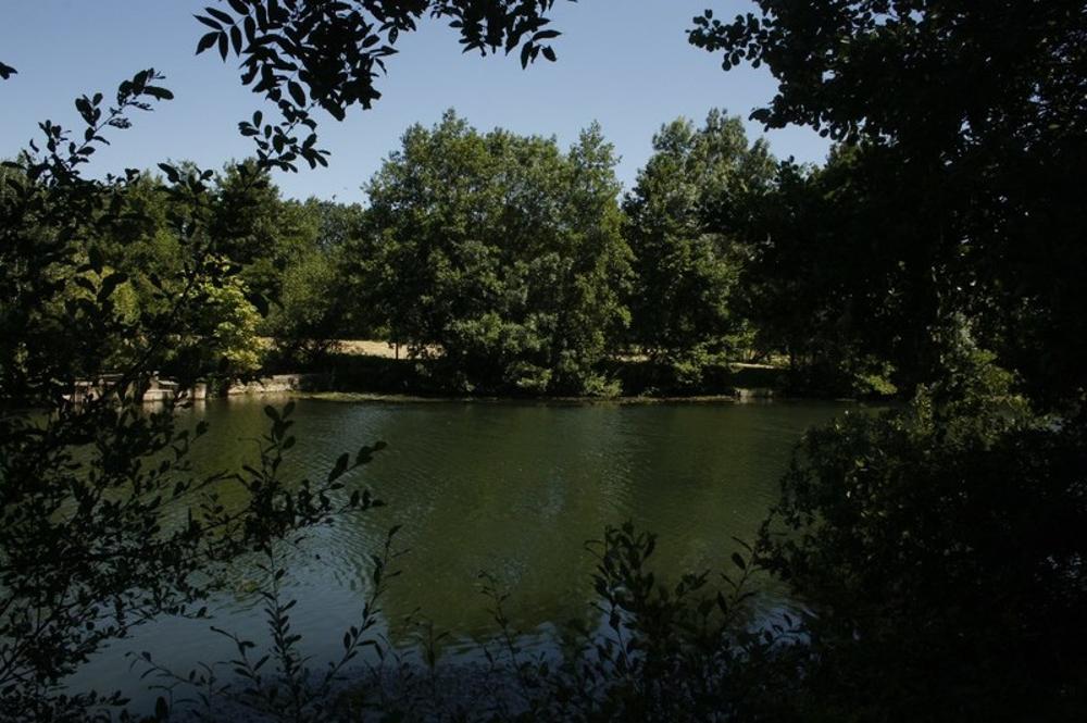 Dissay Vienne Grundstück Bild 3611458