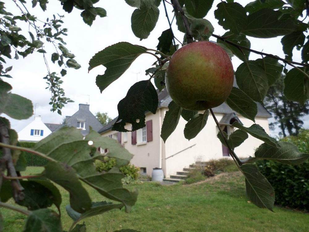 Muzillac Morbihan Haus Bild 3600611