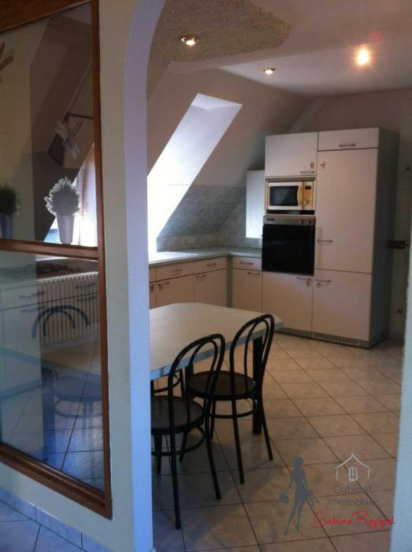 Rhinau Bas-Rhin appartement photo 3820726