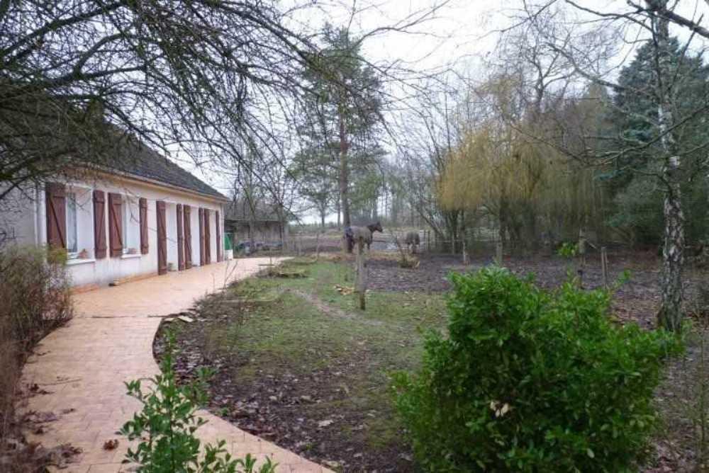 La Selle-en-Hermoy Loiret Haus Bild 3799024
