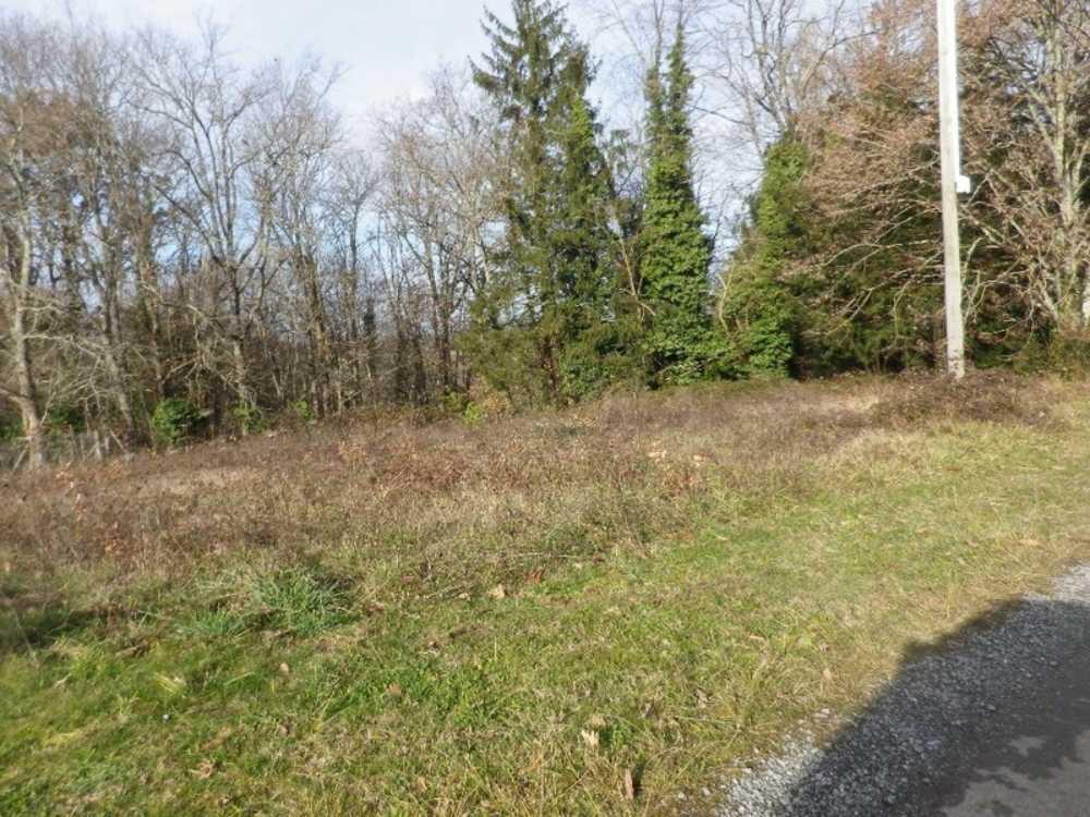 La Douze Dordogne terrain picture 3835831