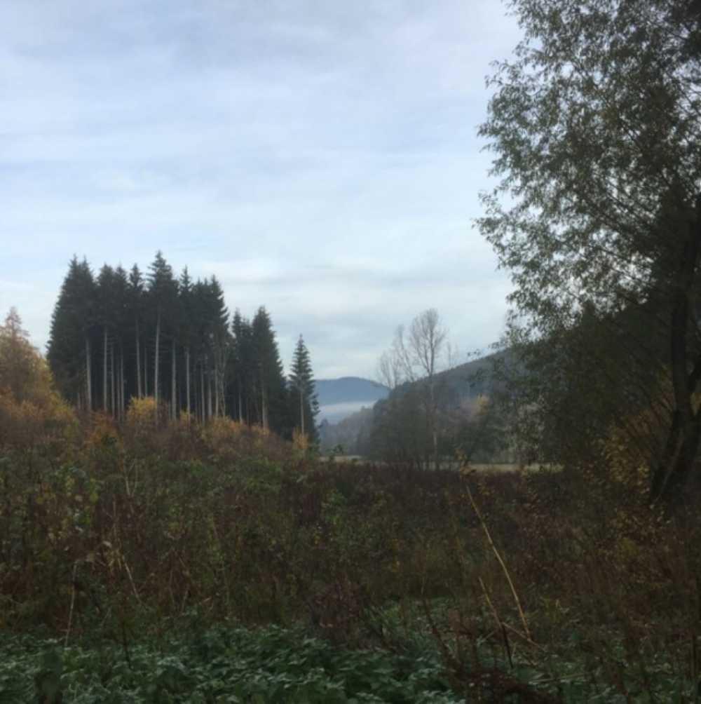 Colroy-la-Roche Bas-Rhin terrain photo 3807418