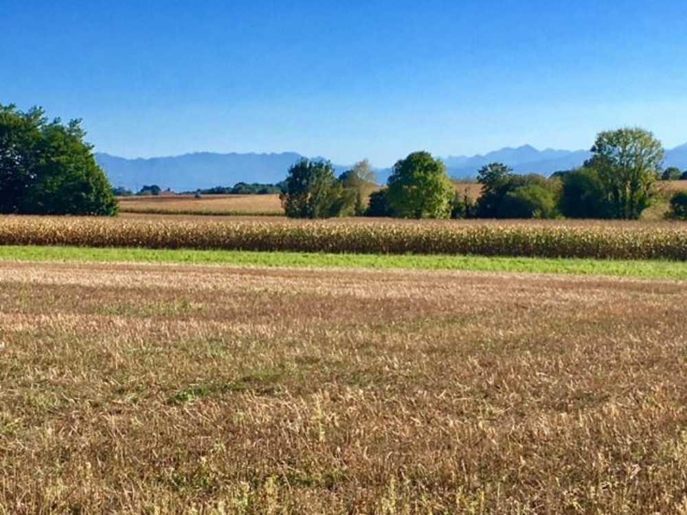 Morlaas Pyrénées-Atlantiques terrain picture 3794444