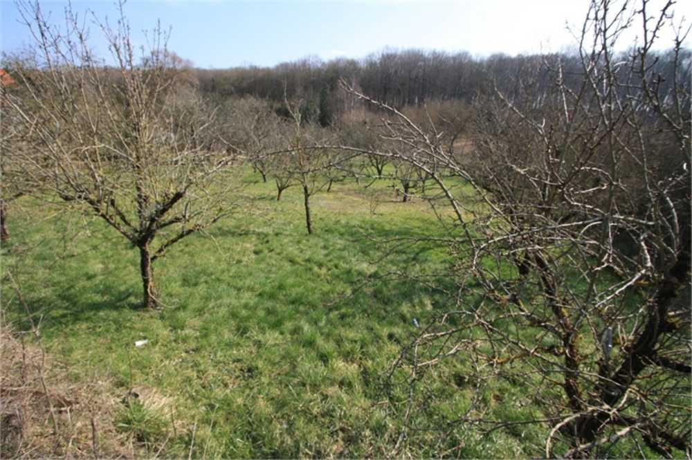 Bouligny Meuse terrain photo 3870278