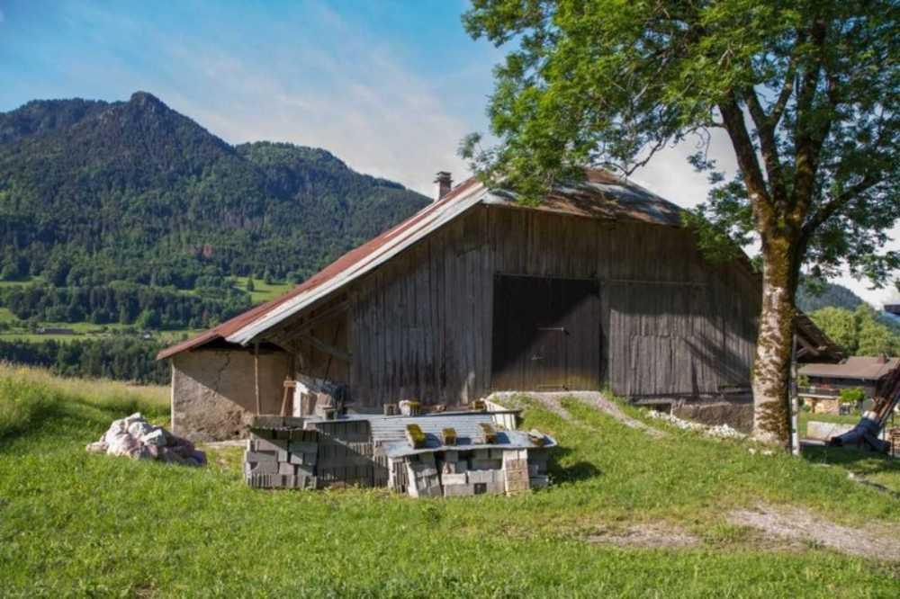 Chevenoz Haute-Savoie Bauernhof Bild 3824722