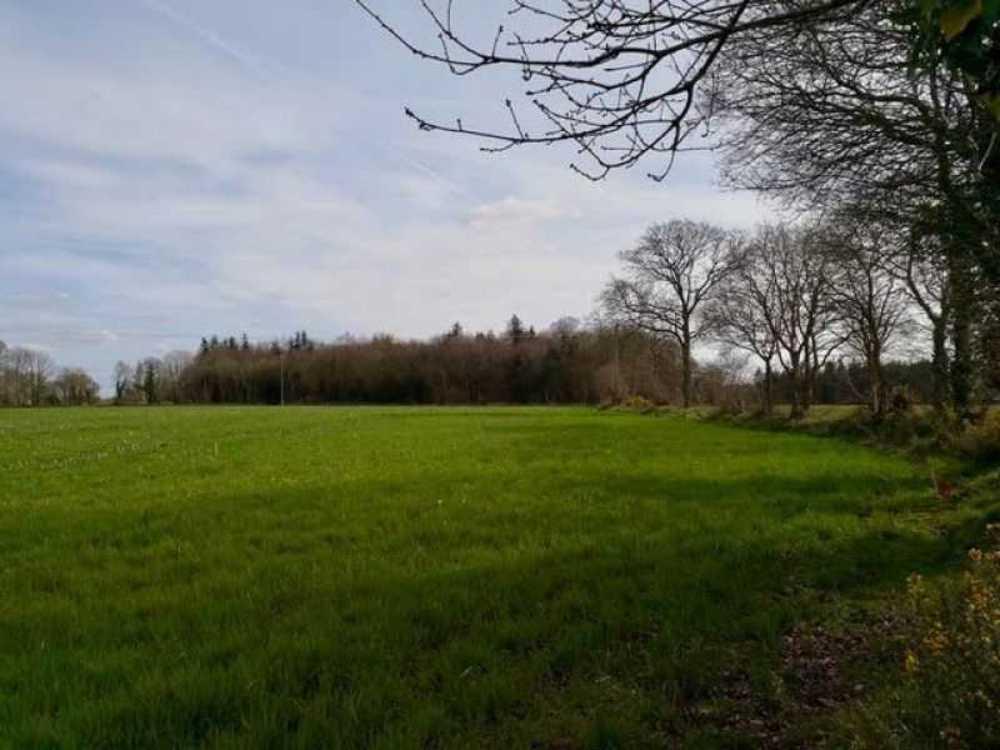 Pommerit-le-Vicomte Côtes-d'Armor Grundstück Bild 3793815