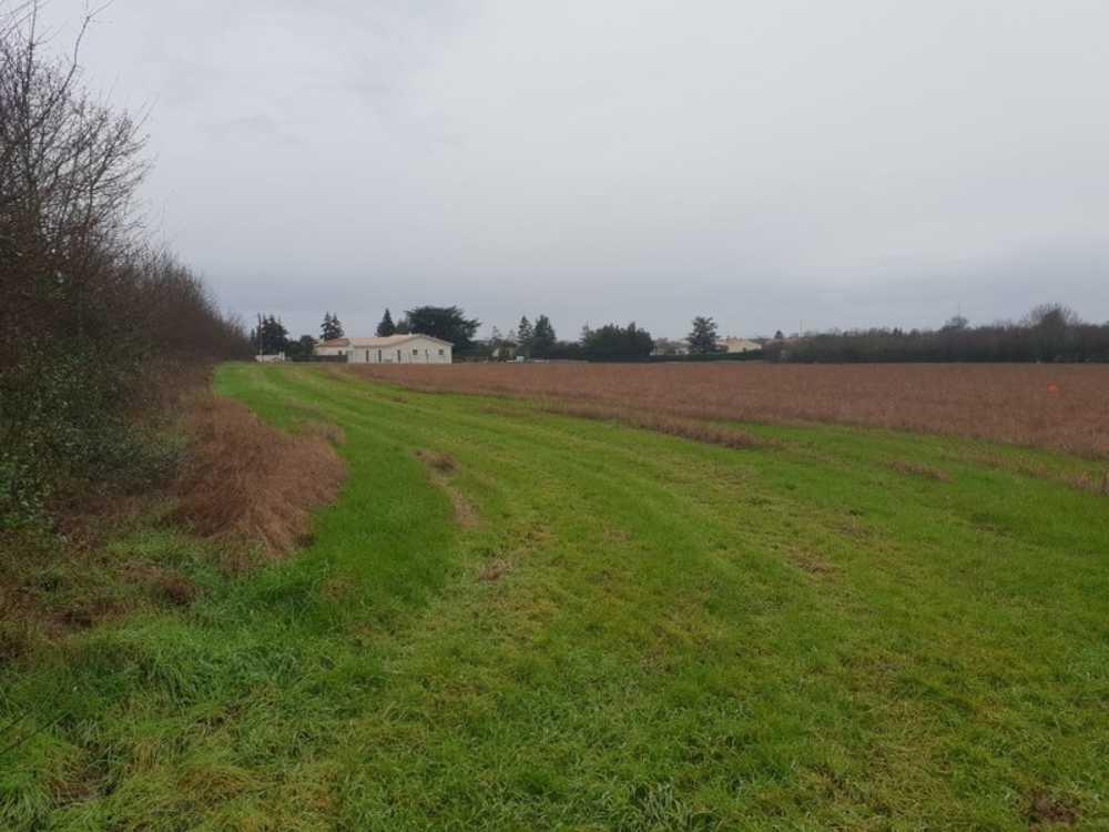 Surgères Charente-Maritime terrein foto 3837729
