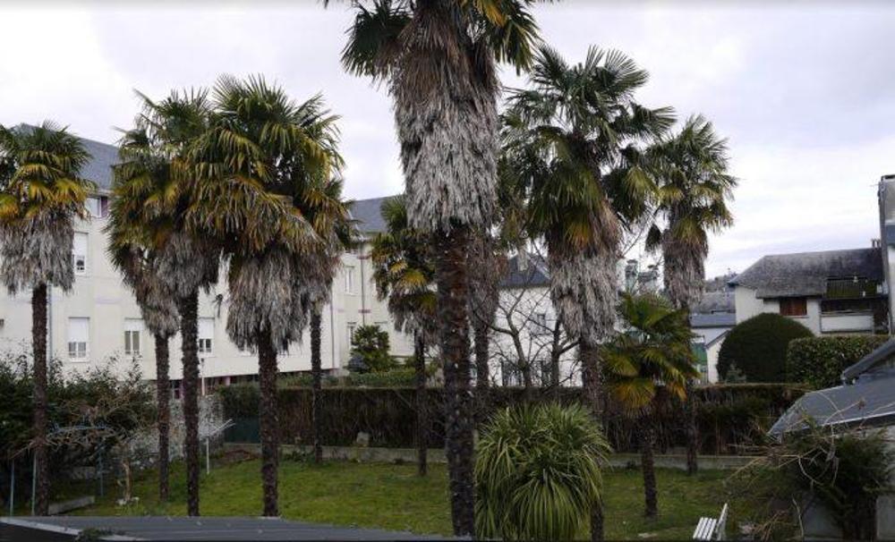Bagnères-de-Bigorre Hautes-Pyrénées Haus Bild 3803723