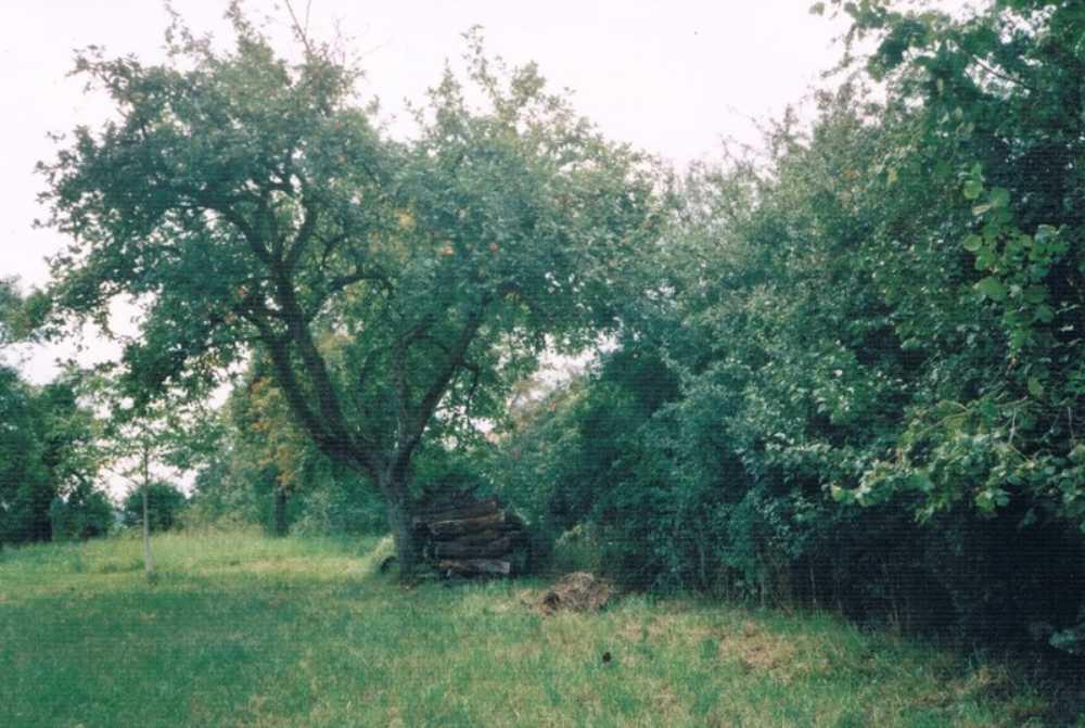 Dieulouard Meurthe-et-Moselle Grundstück Bild 3837799