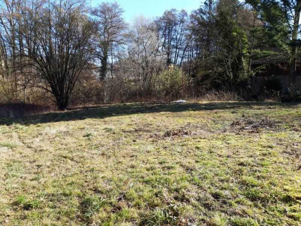 Seppois-le-Bas Haut-Rhin Grundstück Bild 3798477
