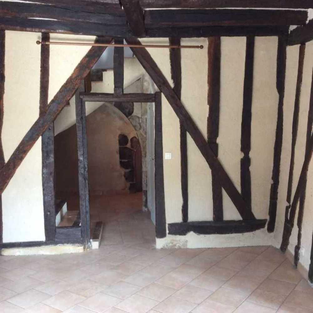 Lussault-sur-Loire Indre-et-Loire Haus Bild 3798554