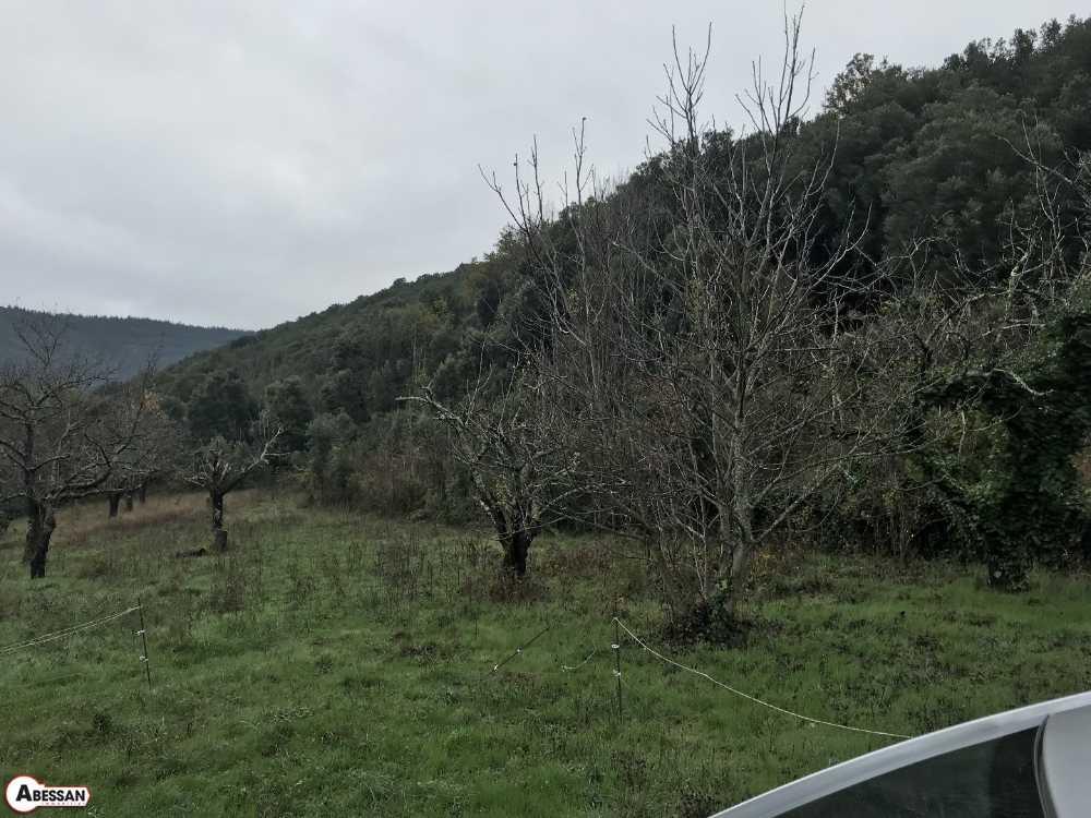 Prémian Hérault terrain picture 3804022